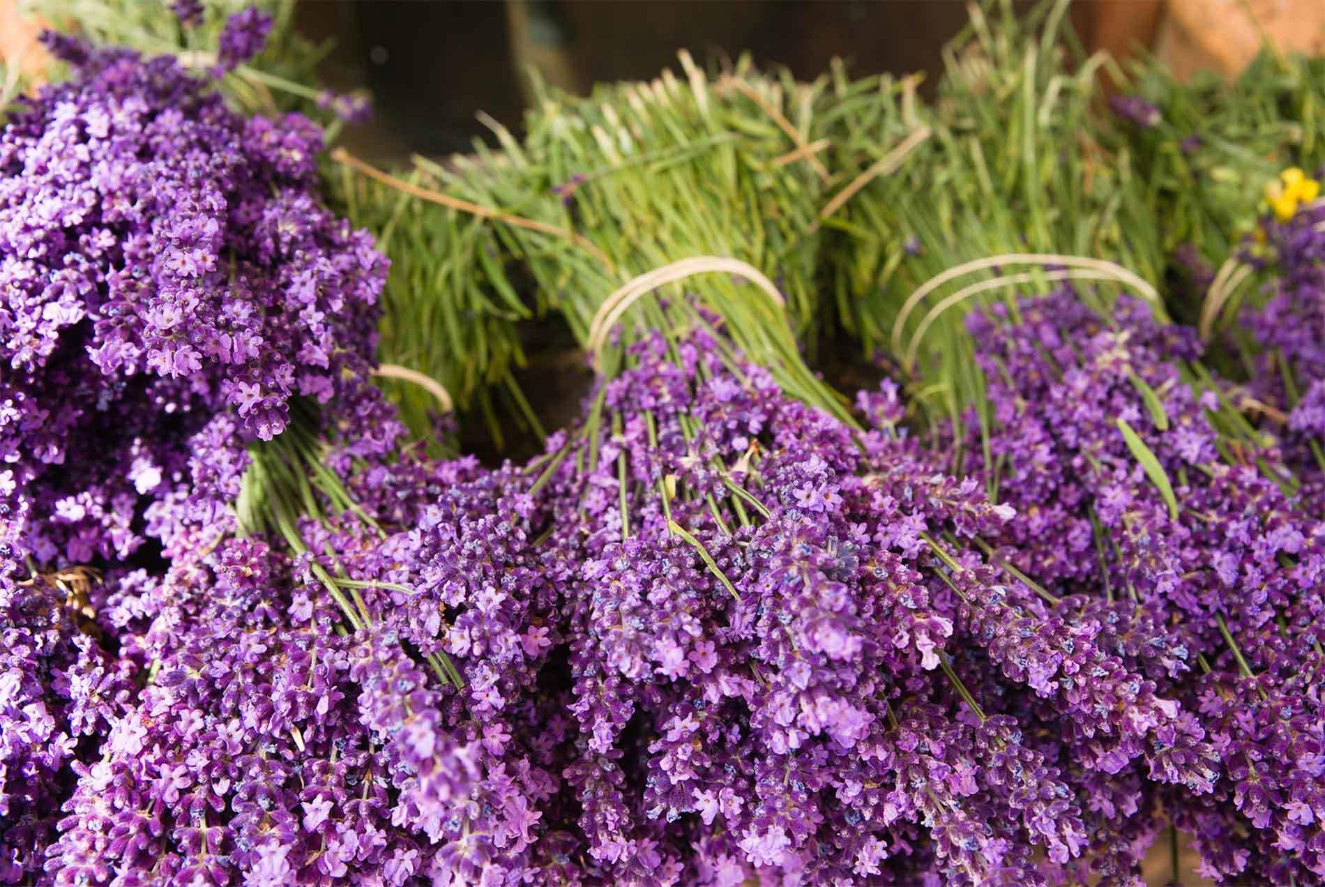Lavender Market 1