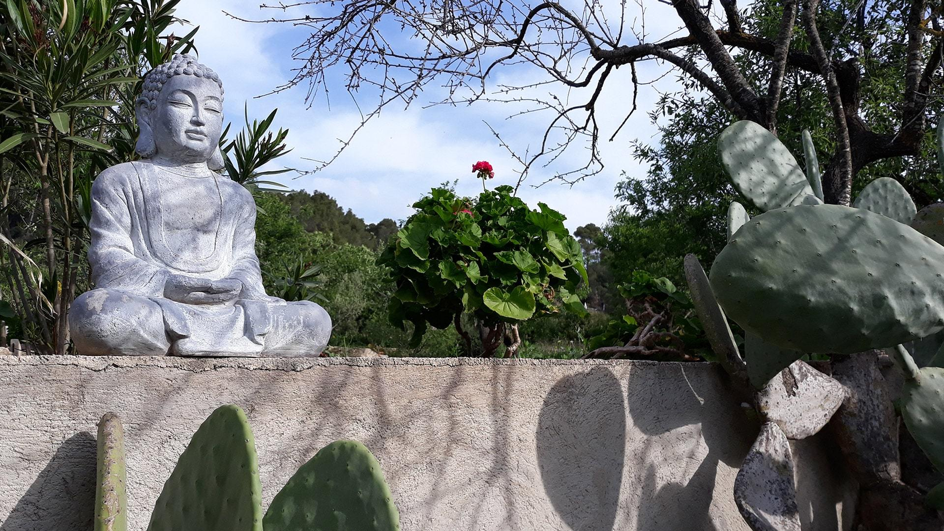 Mediterranean garden Ulla min