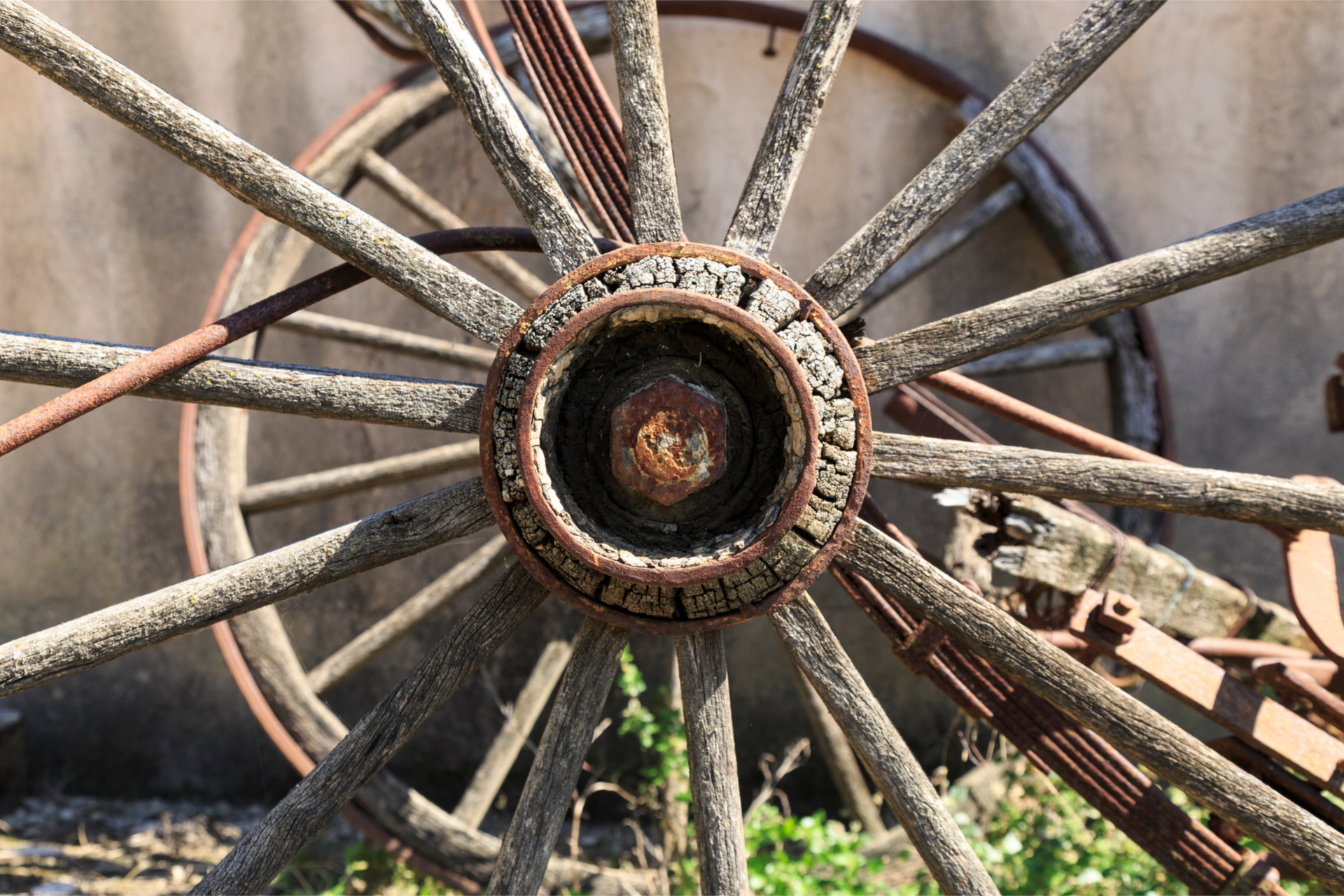 Old Wheel Of Cart Antiques