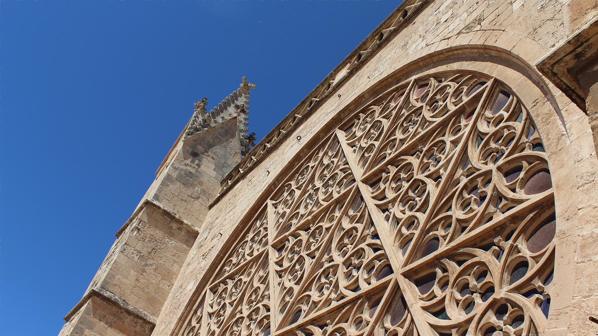 Palma Cathedral Rooftop Adele Chretien Yello There Photography 7