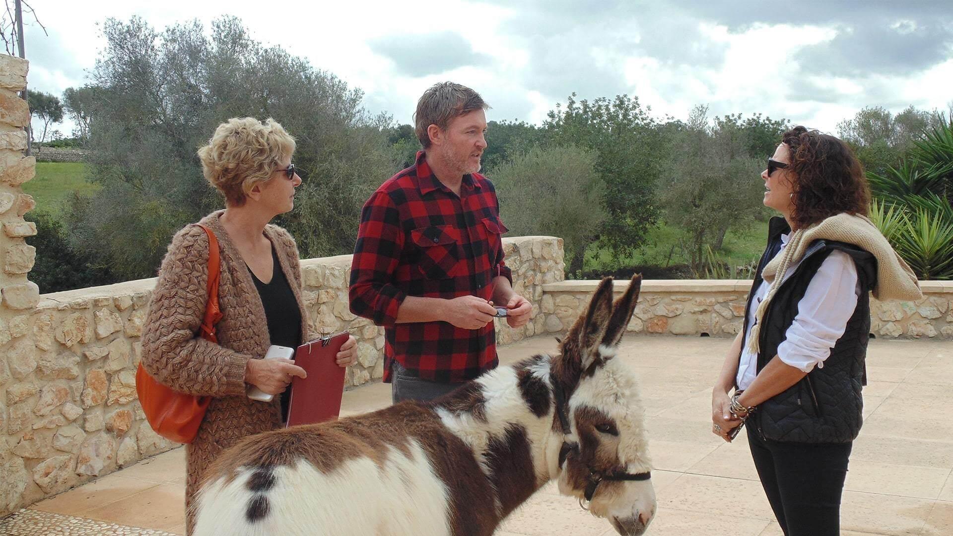 Solysia solar pannels Mallorca Ulla Johnny Holly and the donkey min
