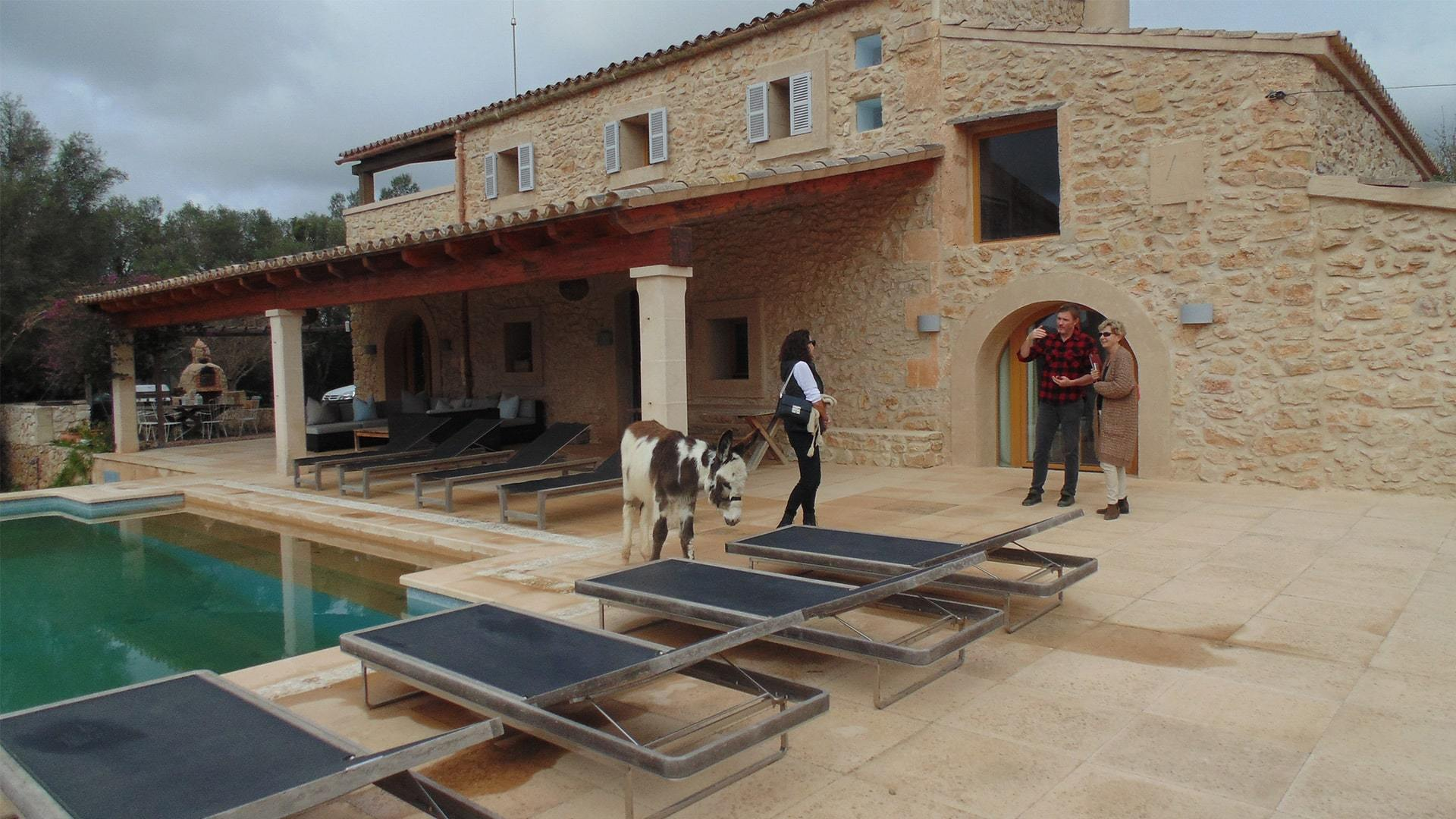 Solysia solar pannels Mallorca house pool and donkey min