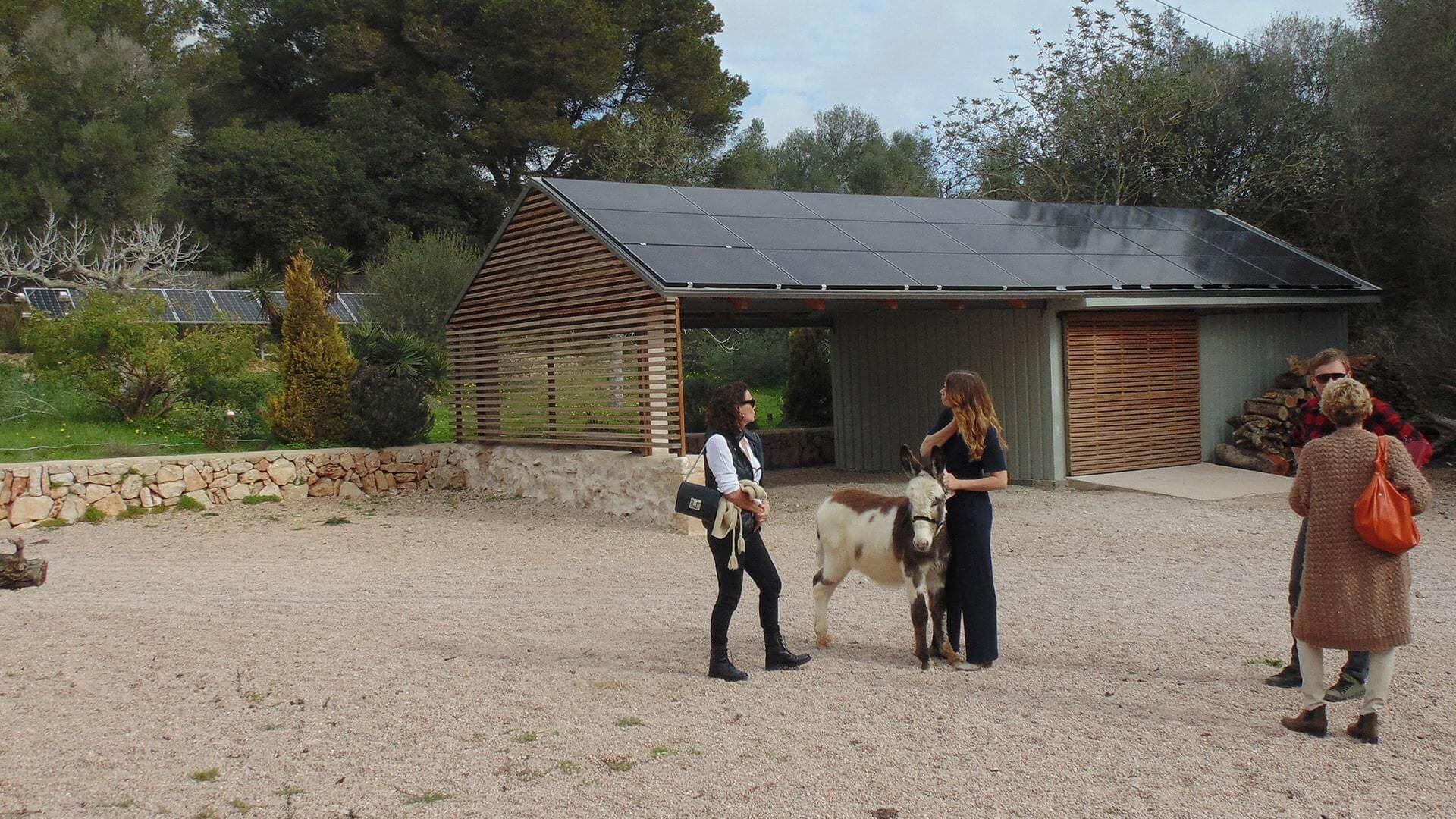 Solysia solar pannels Mallorca tour of the property min