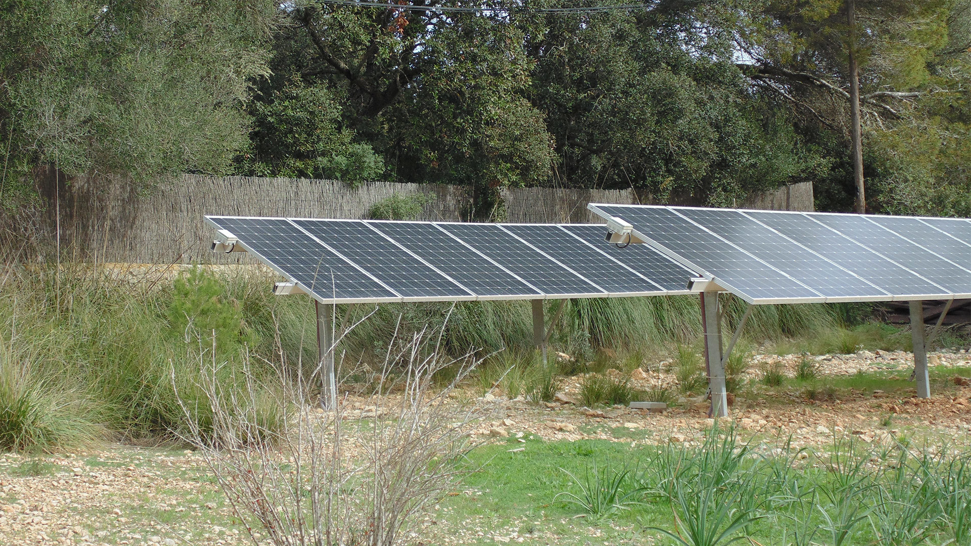 Solysia solar pannels in Mallorca countryside min