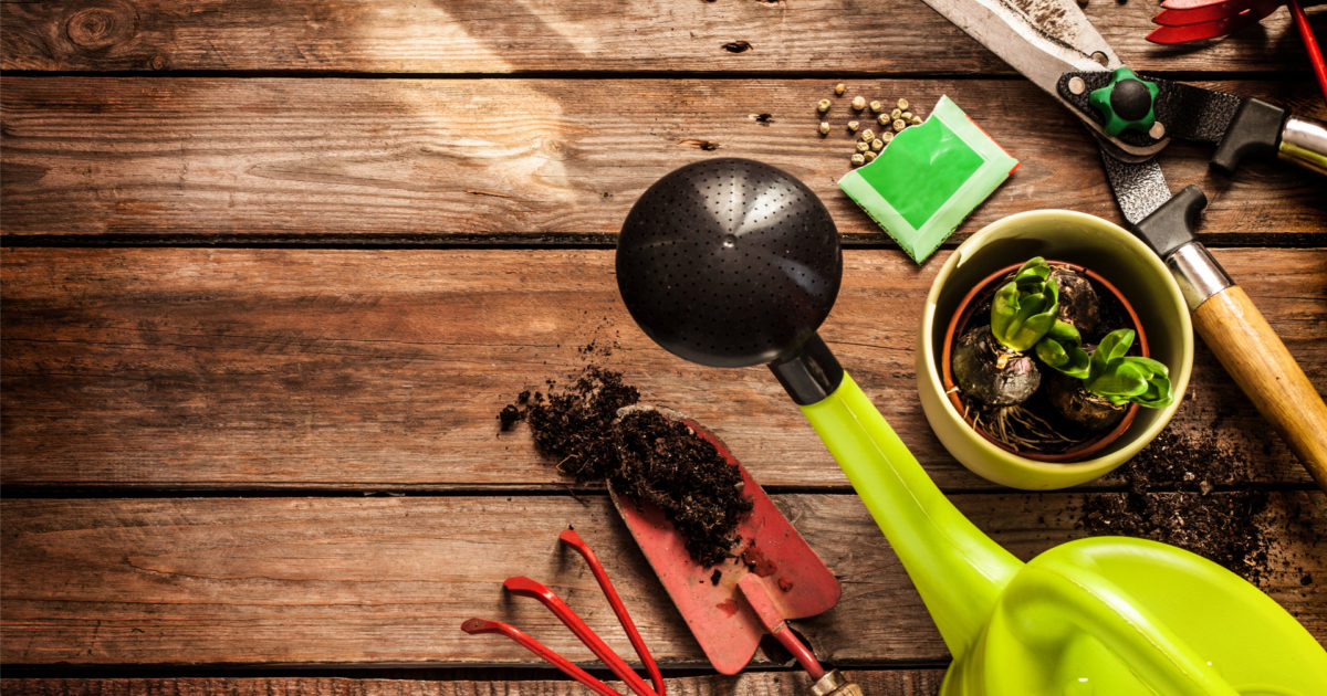 ULTIMATE GUIDE Veggie Gardening