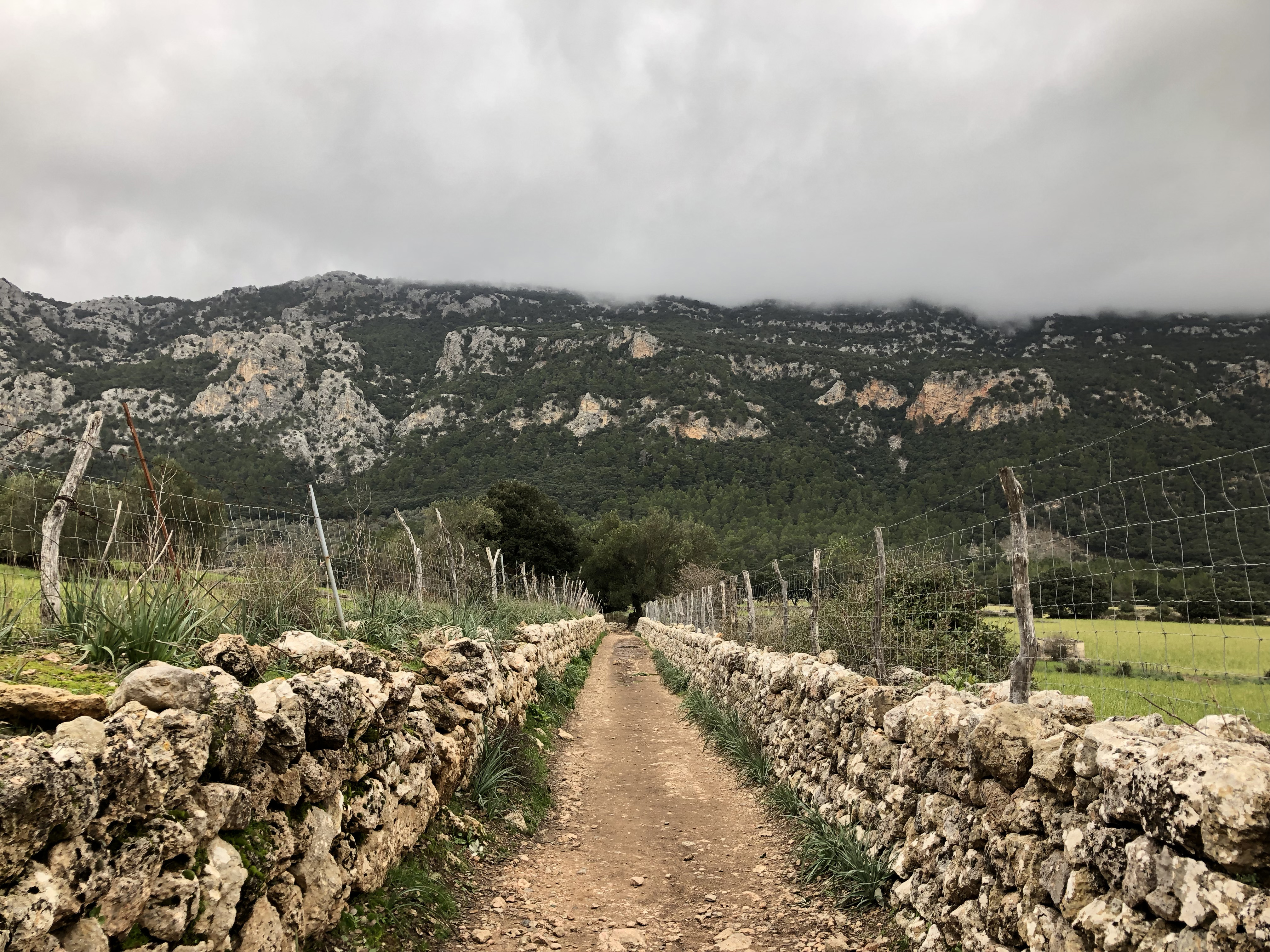 Hike Santa Maria To Orient Mallorca Img 3574