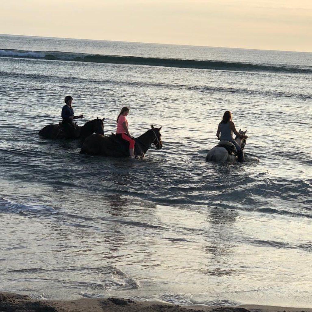 Ladies in water on horseback