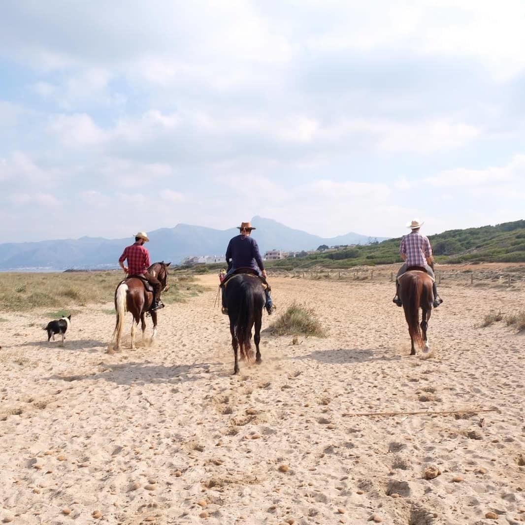 Men horses beach