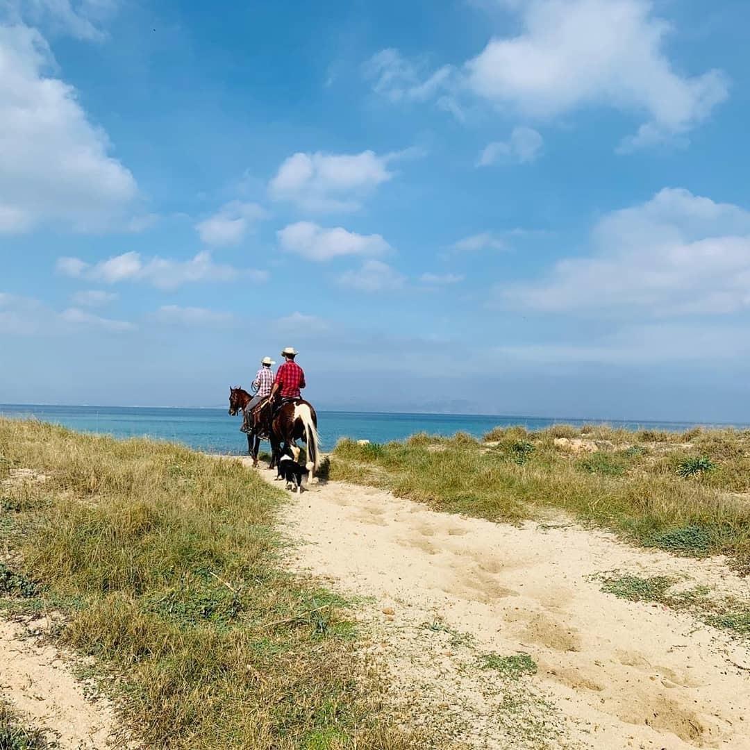 Men near sea on horses