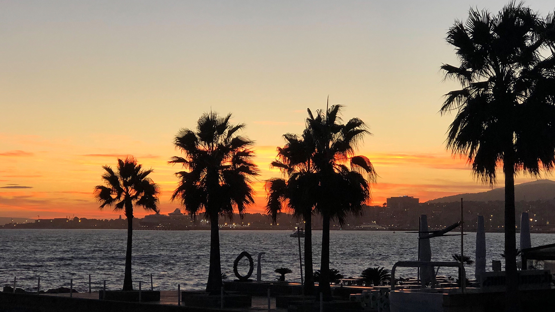 Sunset palmtrees palma beach Photo Adele Chretien
